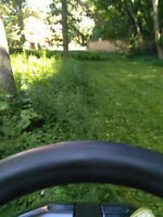 fall clean up lawn care grass installation