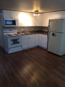 Renovated Pet-friendly Unit available Aug 1