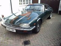 Jaguar xjs. Very much loved xjs up for sale