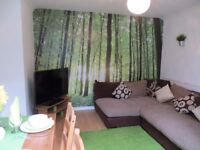 LUXURY DOUBLE ROOM IN PROFESSIONAL HOUSESHARE HEMEL HEMPSTEAD NEAR MAYLANDS
