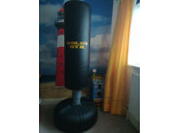 GOLD's GYM free stand punch bag
