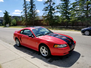 2000 Ford Mustang V-6 3.8L