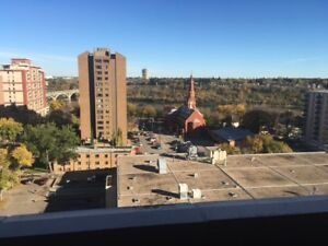 Downtown River-View 14th Floor Pet Friendly 1 Bedroom for August