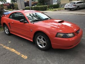 Ford Mustang 40e anniversaire 2004 !