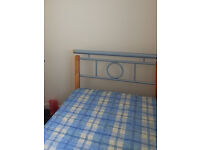 Silver Metal Single Bed and Mattress