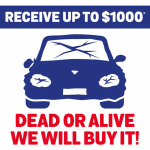 DEAD OR ALIVE, RECEIVE UP TO 1000$*!