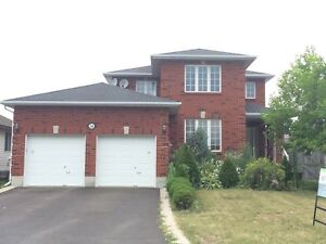 SPACIOUS 3 BDRM HOUSE FOR RENT! 260 Sheridan Street
