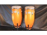 Natal Fuego, Siam Oak Congas, 10 & 11 inch, + adjustable stands