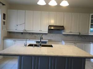 Spring Sale Kitchen Countertops $25 Best Price in St. Catherines
