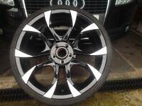 Audi WOLFRACE Assassin Alloy Wheels
