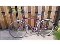 Raleigh Pioneer Classic 15 SIS Men's Bike