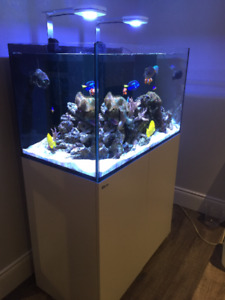 AUQARIUM RED SEA REEFER 250- NEW PRICE
