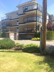Downtown Parksville  condo move in ready or rent out