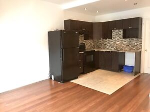Renovated Cozy 3 1/2 in st-Henri downtown