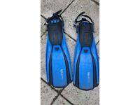 Flippers( swim fins)