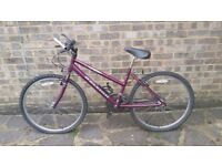 Excellent condition bicycle with minor damage-see description