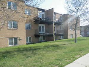 Top floor 1 bedroom suite in College Park