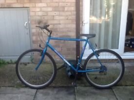 Shooting star lovely bike £40 can deliver for petrol26 wheel22 frame 15 gears in good condition