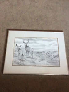 Bernie Brown Framed Print
