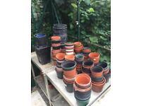 Various plant pots (plastic)