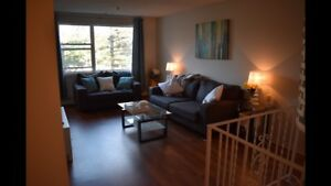 Large 2 Bedroom Apt - Clayton Park (Sublet)