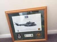 RAF 230 squadron print