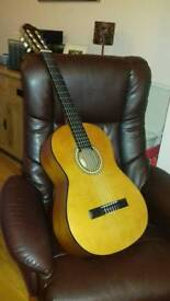 Classical guitar with soft case