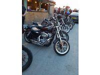 Urgent Harley Davidson Sportser 883 Superlow '14