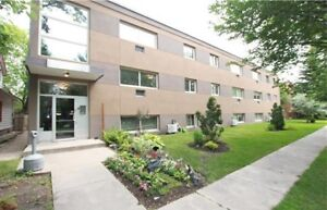 Completey remodelled condo in Norwood Flats!
