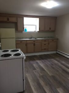 Large renovated 1 bedroom lower level apt (includes heat)