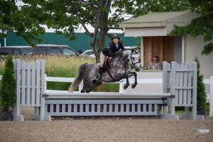 Boarding North Gower, indoor arena, lessons, leasing.