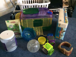 Everything You Need for a Hamster(cage, dust bath, bedding)