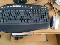 Microsoft Keyboard and Mouse (wired)