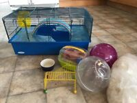 Hamster Cage with 2 Balls