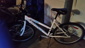 Brand new young ladies bike
