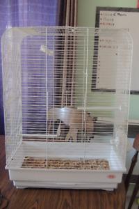 cage volière oiseau vente ou échange