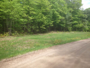 Beautiful Treed Building Lot: Rent to Own Option