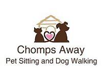 Chomps Away: Pet Sitting and Dog Walking Service