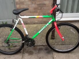 Lovely bike reduced to £30 can deliver for petrol cost 26 wheel 20 frame 18 gears in good order