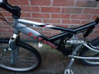 Saracen raw mountain bike