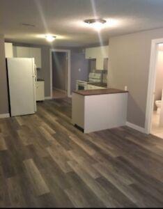 Renovated 2 bedroom suite in St. Albert