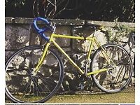 LOST Bicycle on Meadows - Yellow frame with blue handlebars