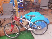 24 inch boys mountain bike