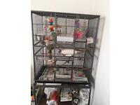 Large cage on stand etc BARGAIN