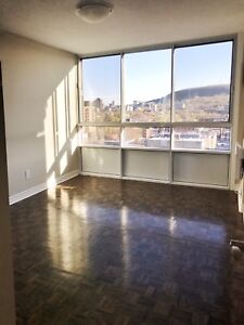 VIEWS OF MONT ROYAL!! 3.5 FULLY RENO!! $500 PROMO