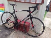 Specialized Allez entry level road bike racer carbon forks light weight bargain