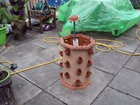 Strawberry Barrel Planter Growing Own Strawberries Grow Fruit & Veg Garden Patio