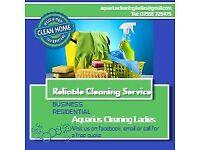 Aquarius Cleaning Ladies