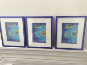 Set of 3 Picture Frames/Photo Frames with Easel Back