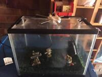 18L Aquarium Fish Tank with Filter and LED Light